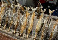 日本全国、ふるさとの「食」が代々木公園に集結。 代々木公園で全国の郷土料理が楽しめるイベント 「ふるさとの食 にっぽんの食」開催決定!! 2019年3月9・10日in代々木公園