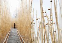 2月16日(土)から京都の岡崎と北山で 大規模屋外アートイベントスタート