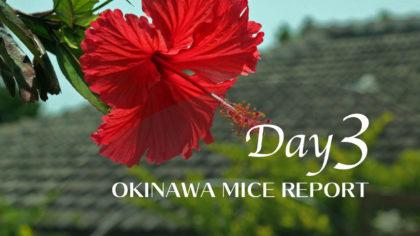 【GoTo 沖縄MICEレポート編】創発と癒しのOKINAWA MICE -3日目 那覇市〜糸満市にMICEの新風吹く-